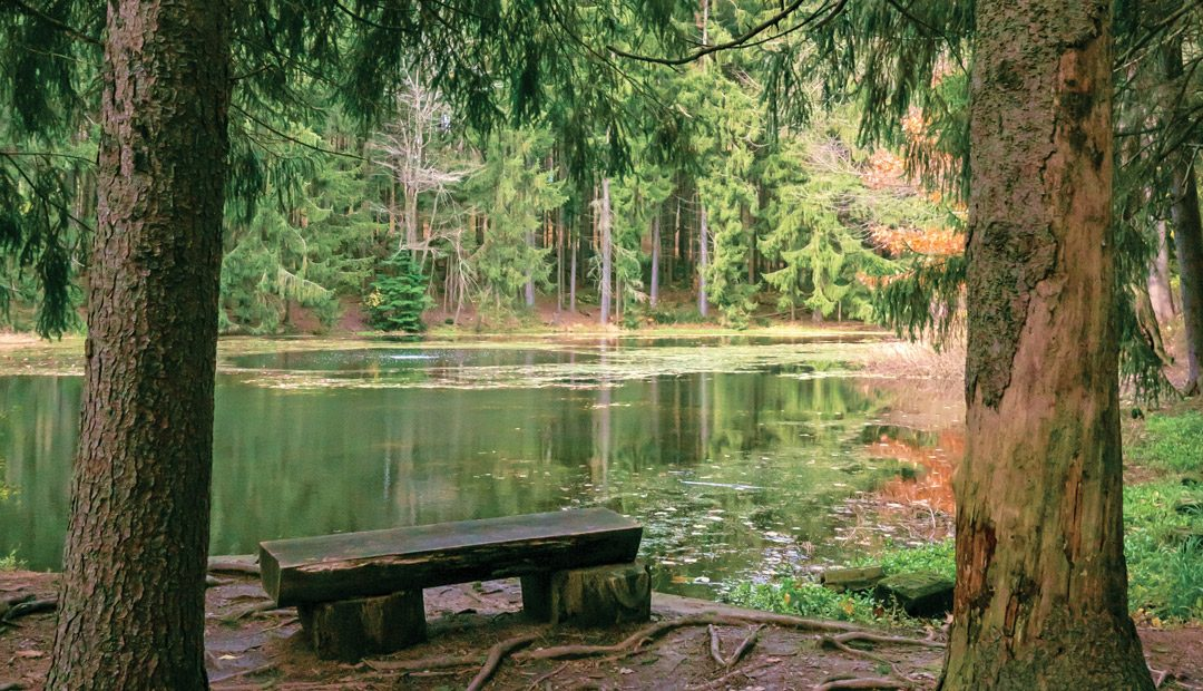 Road Trip: Sahli Nature Park